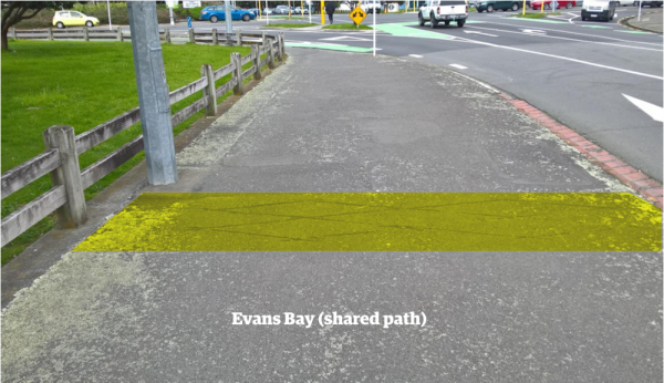 Evans Bay shared path